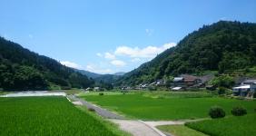 川津南の風景3