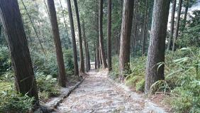 川津南の風景4